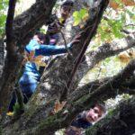 Waldtag in der OGS Niedernetphen